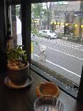 080731_1235~パンダ珈琲店からの眺め.jpg