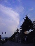 080916_1632~空と雲と木.jpg
