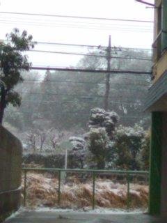 0211_1628 雪景色.jpg